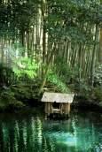 jardin-zen-de-kyoto-par-romain-vaysse